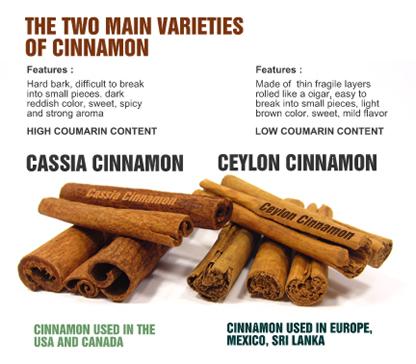 What is Cinnamon | Cinnamon Vogue