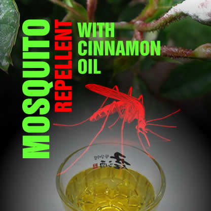 mosqiuito repellant_cinnamon