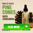 how to scent pine coens with cinnamon