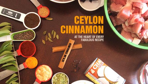 Ceylon Cinnamon | True Cinnamon | Cinnamomum Zeylanicum