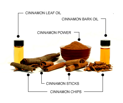 forms of cinnamon