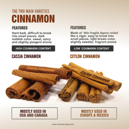History Of Cinnamon Cinnamon Vogue