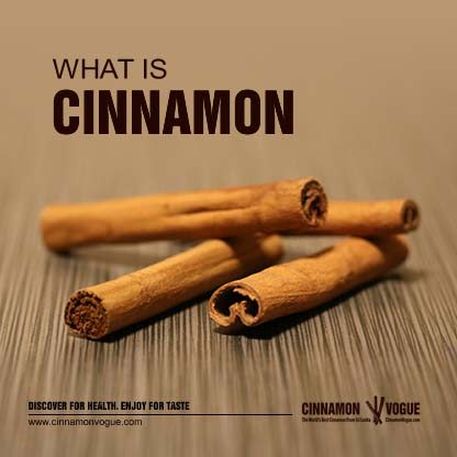 what_is_cinnamon